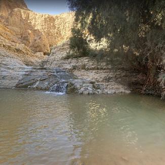 Nachal Arugot - Desert Oasis