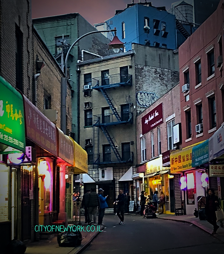 cityofnewyork.co.i chinatown.png