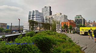 cityofnewyork.co.il (24).jpg