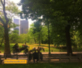 Cityofneyork.co.il סנטרל פארק ניו יורק.j