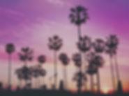 סילבסטר בלוס אנג׳לס Cityoflosangeles.co.il