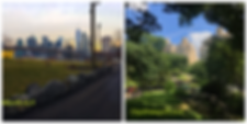 Optimized-Cityonnewyork.co.il.png