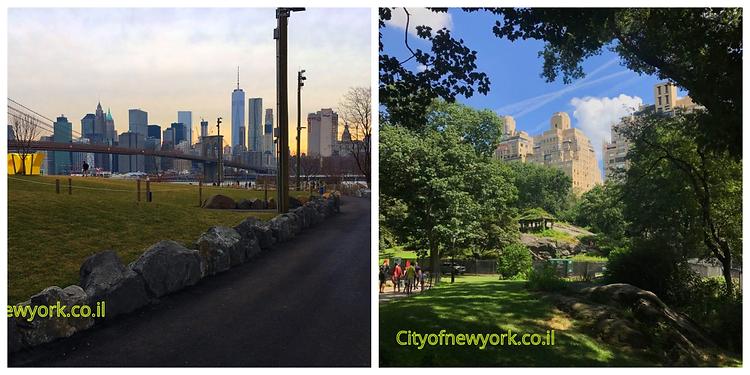 Optimized-Cityonnewyork.co.il.png