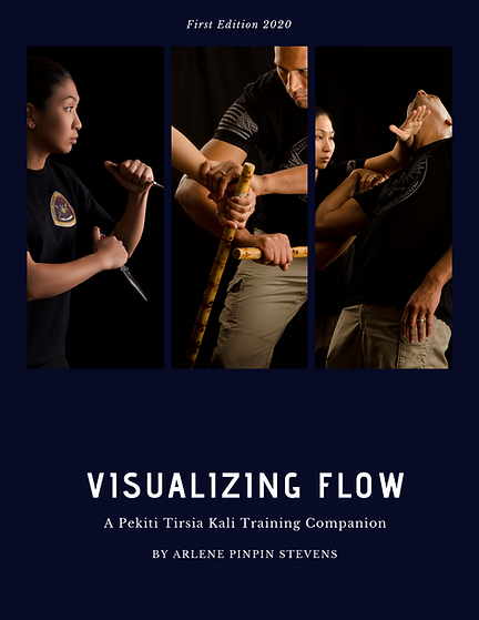 Visualizing Flow (front cover)