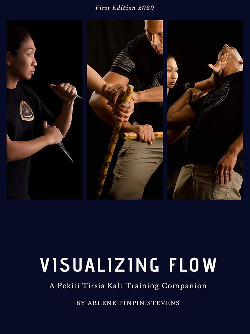 Visualizing Flow (Book)