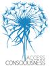 Un nouvel outil : l'Access bars