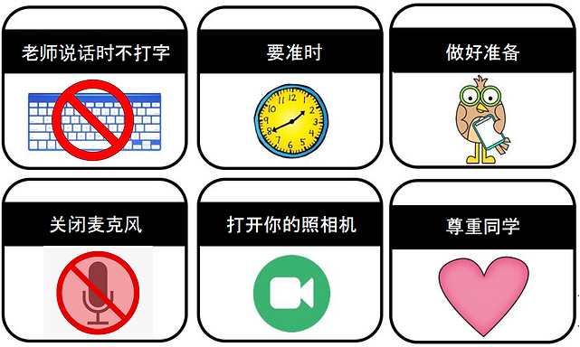 student expectations on zoom - Chinese.p
