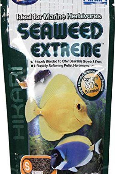 Hikari Seaweed Extreme Small Pellet - 100g