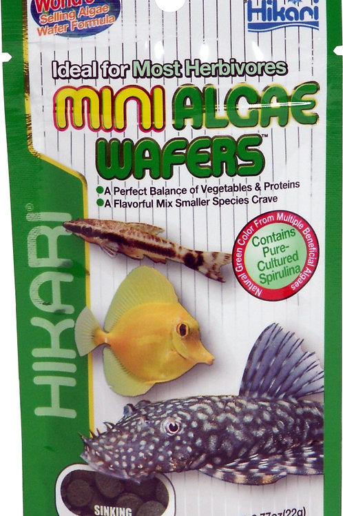 Hikari Tropical Mini Algae Wafers- 22g