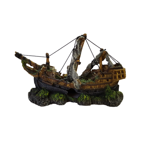 Ornament Ship Wreck