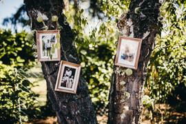 Hochzeitsbilder-Britta-_-Anand-007.jpg