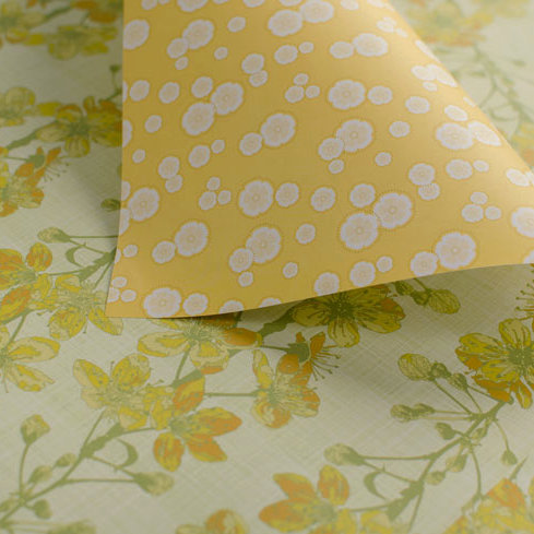 WS:Cherry Blossoms - spring green & yellow - wrapping papers