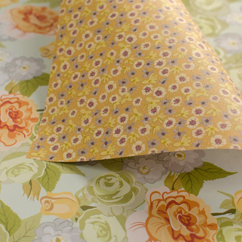 Bold Roses & Garden Ditsy - apricot & mint - wrapping paper