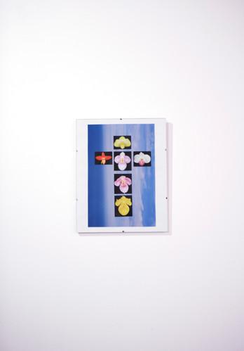 Orchid cross.jpg