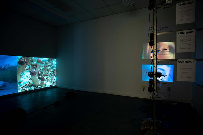 5. Landskrona Foto Festival 2020 install