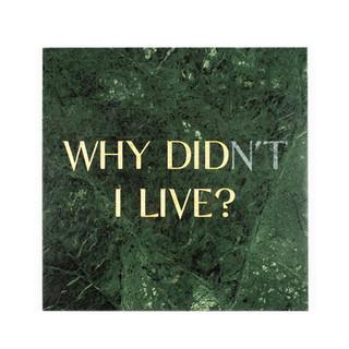 Gravestones gravestones stone marble gold tomb tombstones tombstones tim Bengel headstone why didn't i live