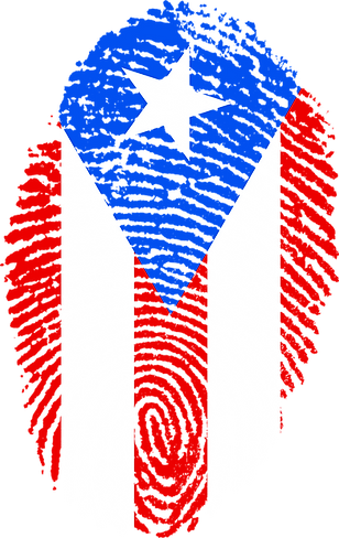 puerto-rico-654978_1920.png