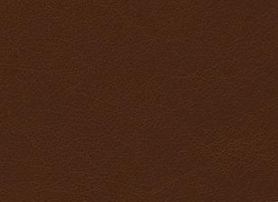 Brown Leather Plain.jpg