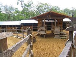 Зоопарк горица, Болгария