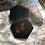 Thumbnail: Caja  lacada.