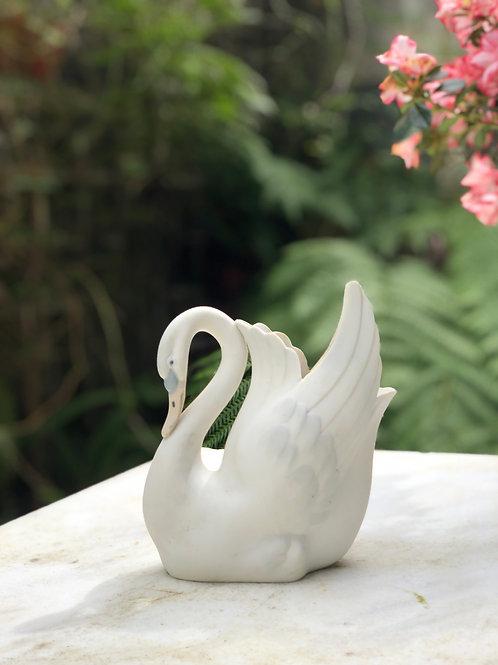 Cisne Porcelana