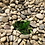 Thumbnail: Taza de café de duralex verde.