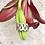 Thumbnail: Anillo con eses,