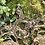 Thumbnail: Perchero de bronce.