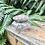 Thumbnail: Polvera de cristal pintada a mano