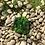 Thumbnail: Cuenco duralex verde