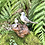 Thumbnail: Familia gaviotas. Talla de madera.