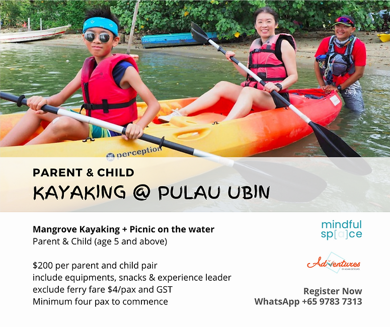 mangrove kayaking singapore.png