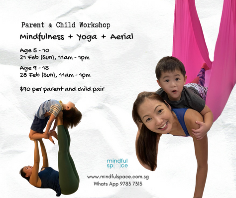 family aerial yoga and mindfulness.png