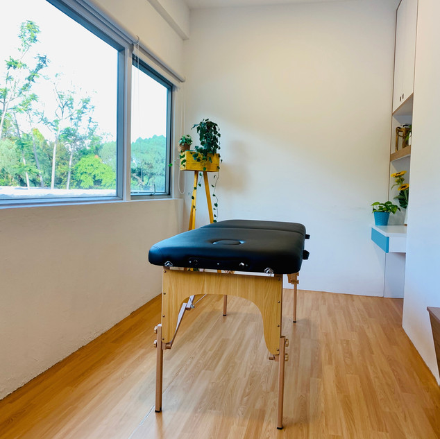 Coaching & Therapy Room