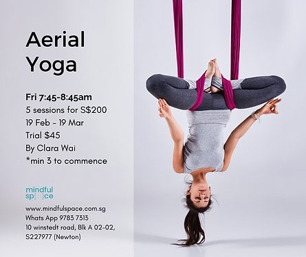 Aerial Yoga for Adults