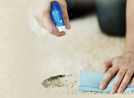 Carpet cleaning and End of Lease cleaning tips and advice