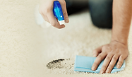 Carpet-cleaning_stain-treatment.png