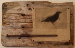 """blackbird"" SOLD"