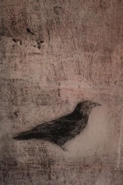 """""""blackbird III"""" SOLD"""