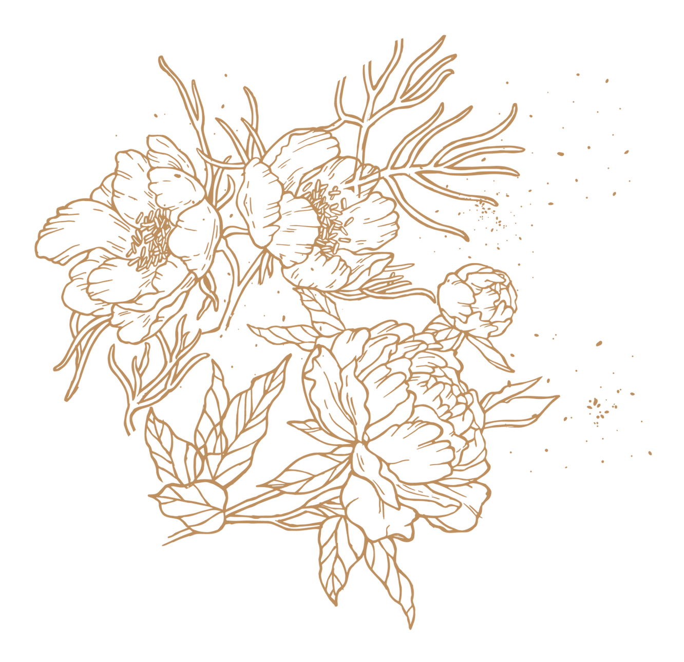 as_gold-flower-graphic-1-1577x1525.png