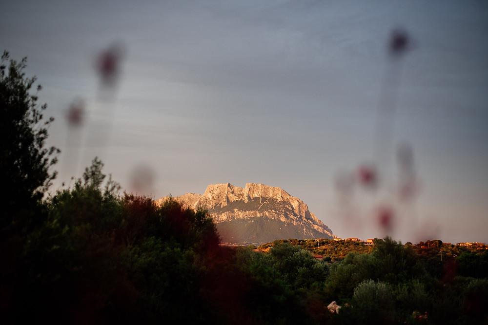 Sardinia Wedding Planner Exclusive Photographer Tavolara Island Hotel Ollastu