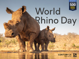 World Rhino Day FINAL.jpg