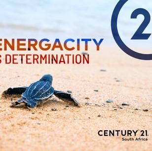 013 - Determination.jpg