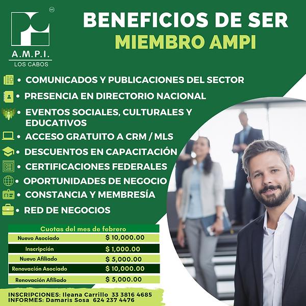 BENEFICIOS ESPAÑOL.png