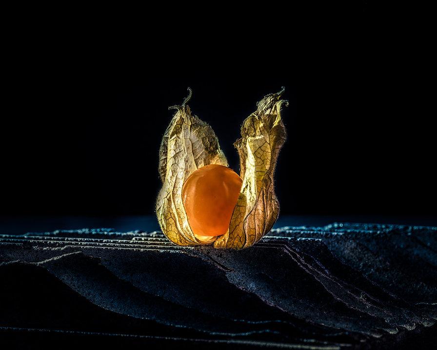 fotograaf_Dendermonde_foodfotografie