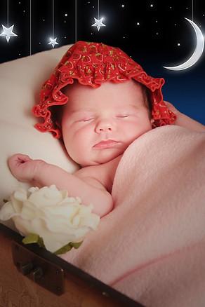 new born baby photo shoot, belfast