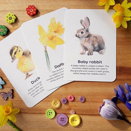 Spring flashcards (set of 10)