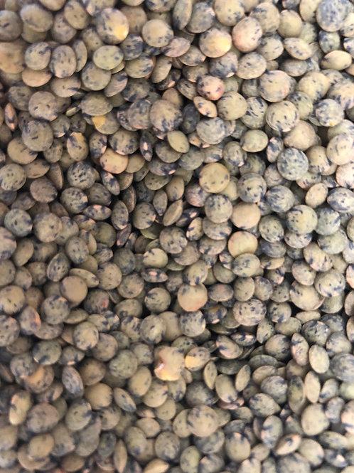 Organic French lentils (100g)