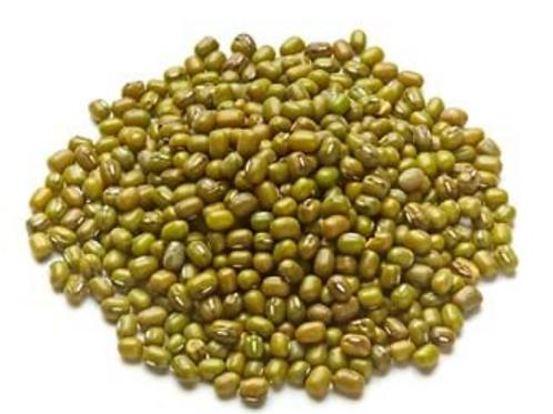 Organic mung beans (100g)