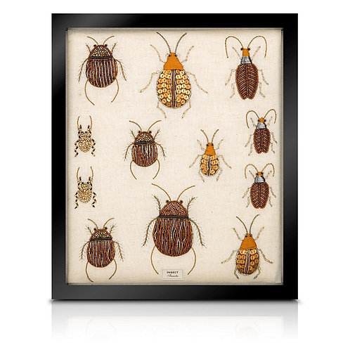 Beaded beetle collection